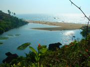 Arambol Beach Photo Gallery